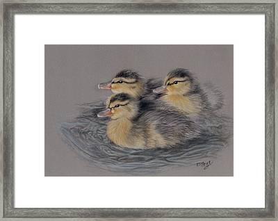 Three Ducklings Framed Print by Edmund Price