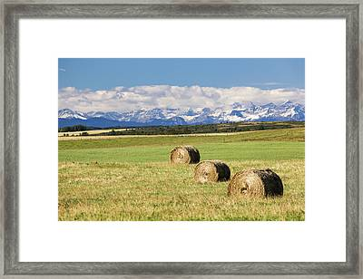 Three Hay Bales In A Field Framed Print by Michael Interisano