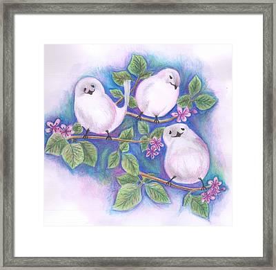 Three Little Birds Framed Print by Cherie Sexsmith