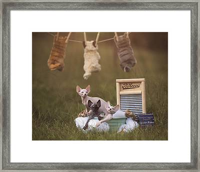 Three Little Kittens Framed Print by Brittney Gobble