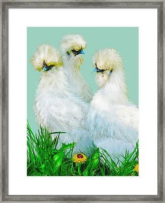 Three Silky Ladies Framed Print by Jane Schnetlage