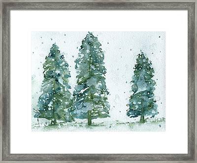 Three Snowy Spruce Trees Framed Print by Dawn Derman