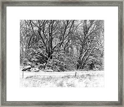 Three Tires And A Snowstorm Framed Print by Bill Kesler