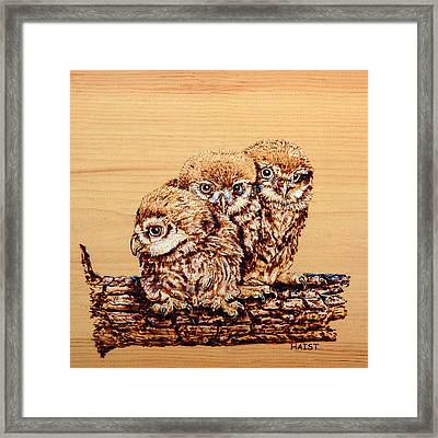 Three's Company Pillow /bag Framed Print by Ron Haist