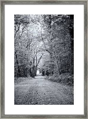 Through The Forest Framed Print by Sue OConnor