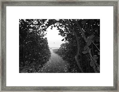 Through The Looking Glass Framed Print by Rob Hans