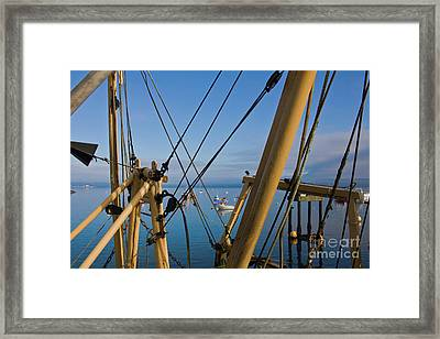 Through The Rigging Framed Print by Terri Waters