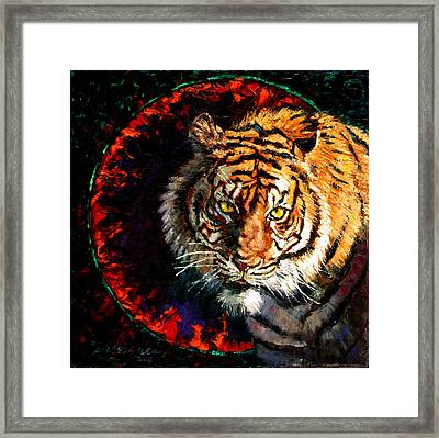 Through The Ring Of Fire Framed Print by John Lautermilch