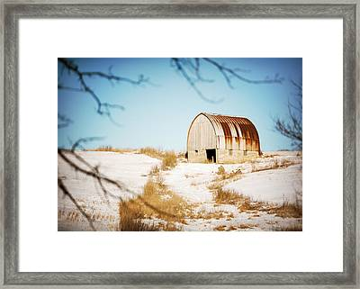 Through The Trees Framed Print by Todd Klassy