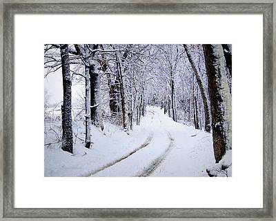 Through The Woods Framed Print by Cricket Hackmann