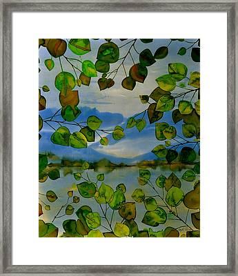 Thru The Aspen Framed Print by Carolyn Doe