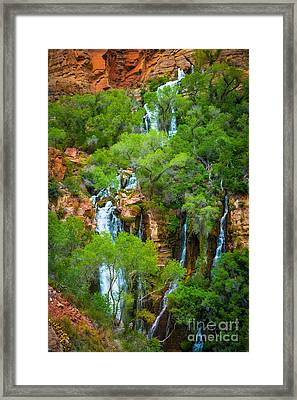 Thunder River Oasis Framed Print by Inge Johnsson