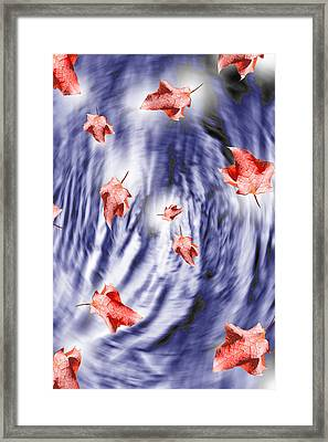 Thunderstorm Leaves  Framed Print by Cathy  Beharriell