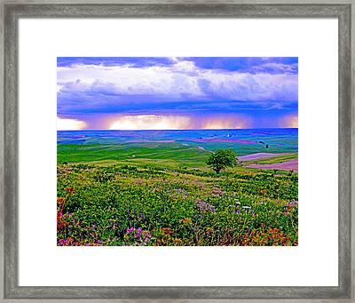 Thunderstorm Over The Palouse Framed Print by Margaret Hood