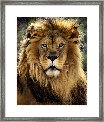 Thy Kingdom Come Framed Print by Linda Mishler