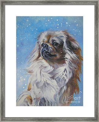 Tibetan Spaniel In Snow Framed Print by Lee Ann Shepard