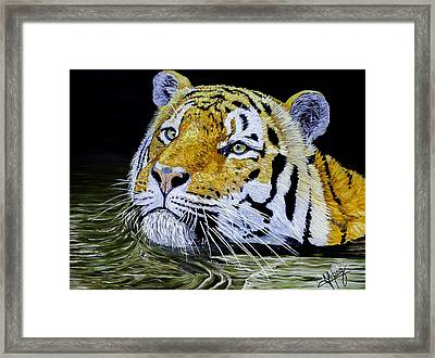 Tiger 24x18x1 Inch Oil On Gallery Canvas Framed Print by Manuel Lopez