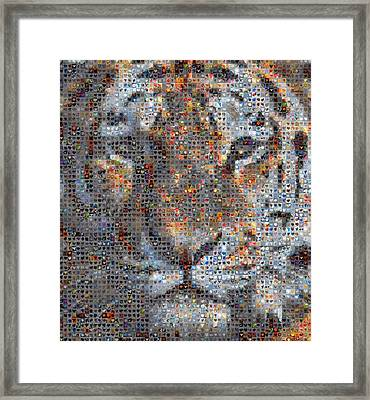 Tiger Framed Print by Boy Sees Hearts