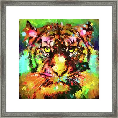 Tiger Framed Print by Gary Grayson