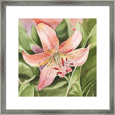 Tiger Lily Watercolor By Irina Sztukowski Framed Print by Irina Sztukowski