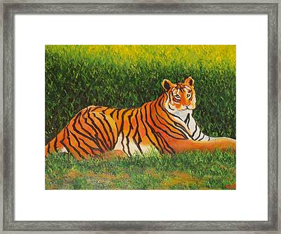 Tiger Framed Print by Lore Rossi