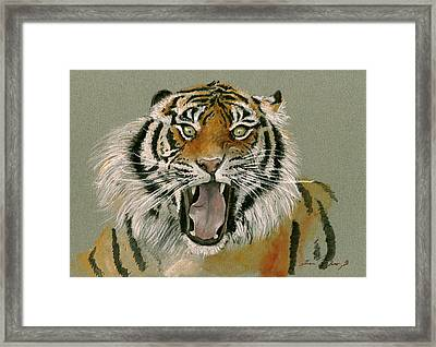 Tiger Portrait Framed Print by Juan Bosco
