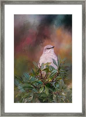 Tilda In The Holly Framed Print by Jai Johnson