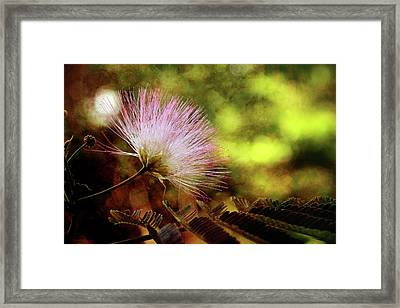 Time Reaches Forever Framed Print by Mike Eingle