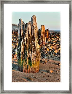 Time Stands Still Framed Print by Andrew Crispi
