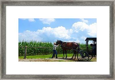 Time To Go Home Framed Print by Tina M Wenger