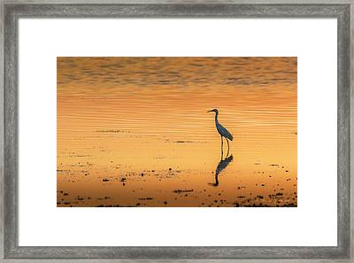 Time To Reflect Framed Print by Marvin Spates