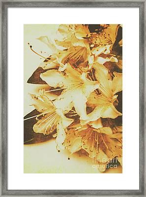Timeless Romance Framed Print by Jorgo Photography - Wall Art Gallery