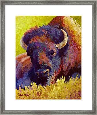 Timeless Spirit - Bison Framed Print by Marion Rose