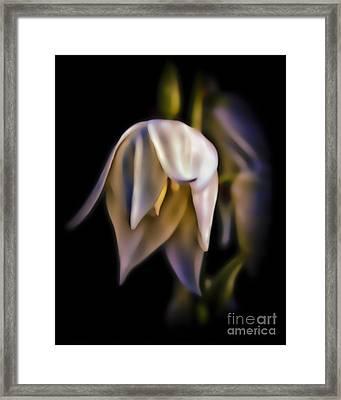 Tinker Bell Flower Framed Print by Walt Foegelle