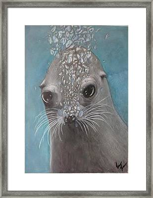 Tiny Bubbles Framed Print by Lori Lee