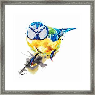 Tiny Colorful Bird Framed Print by Marian Voicu