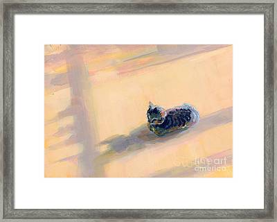 Tiny Kitten Big Dreams Framed Print by Kimberly Santini
