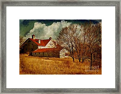 Tired Framed Print by Lois Bryan