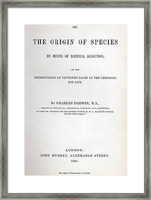 Title Page Of The Origin Of Species By Charles Darwin Framed Print by Charles Darwin