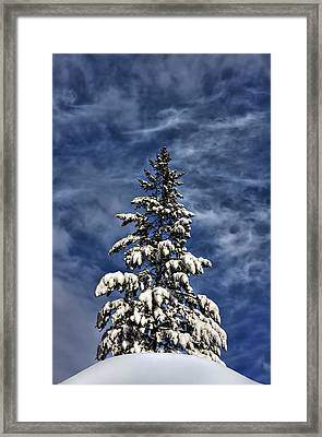 To Blue Horizons Framed Print by Evelina Kremsdorf