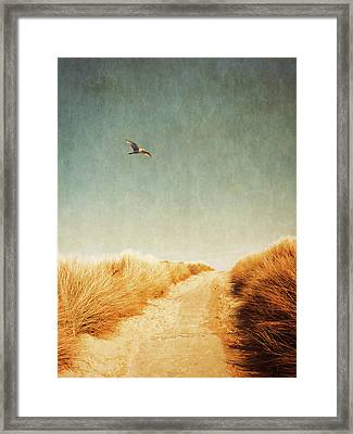 To The Beach Framed Print by Wim Lanclus
