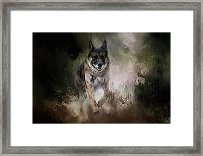 To The Rescue Framed Print by Jai Johnson