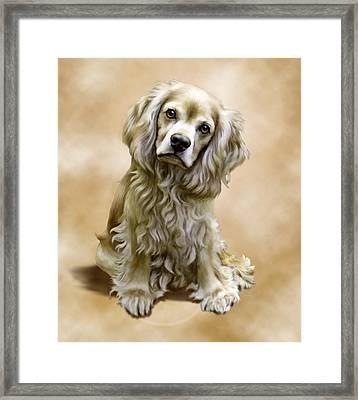 Toby Framed Print by Barbara Hymer