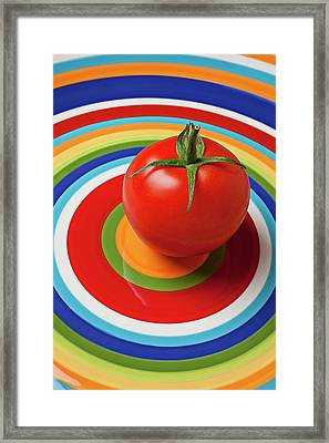 Tomato On Plate With Circles Framed Print by Garry Gay
