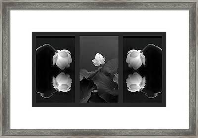 Tonal Study Triptych Framed Print by Jessica Jenney