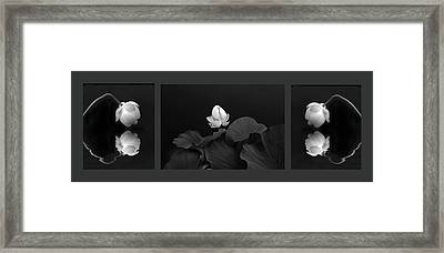 Tonal Study Triptych II Framed Print by Jessica Jenney