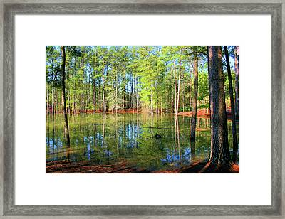Too Much Rain Framed Print by Kristin Elmquist