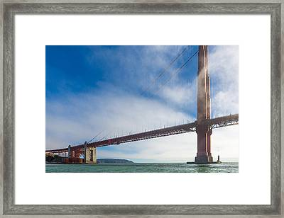 Too Tall Framed Print by Scott Campbell