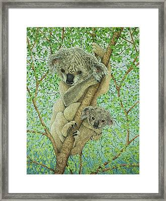 Top Of The Tree Framed Print by Pat Scott