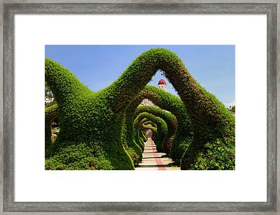 Topiary Garden Archways And Path In Zarcero Costa Rica Leading T Framed Print by Reimar Gaertner